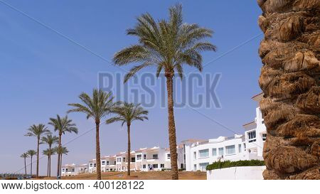 Tropical Palms Against The Sky And Hotel In Egypt. Hotel Exterior In A Tropical Country. Beautiful E