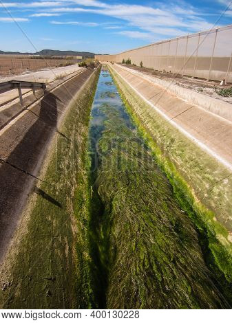 Aqueduct In Spain Blocked With Green Weed