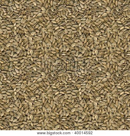 Sunflower Seeds Seamless Background Pattern
