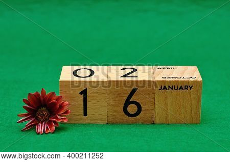 16 January On Wooden Blocks With An African Daisy On A Green Background