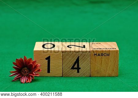 14 March On Wooden Blocks With An African Daisy On A Green Background
