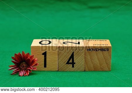 14 November On Wooden Blocks With An African Daisy On A Green Background