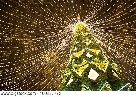 High City Christmas Tree In The Park With A Cap Of Lights Garlands, Glows At Night On The Street. Ch