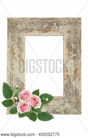 Shabby Shick Styled Photo Frame Decorated With Fresh Pale Pink Roses With Space For Your Photo On Tr