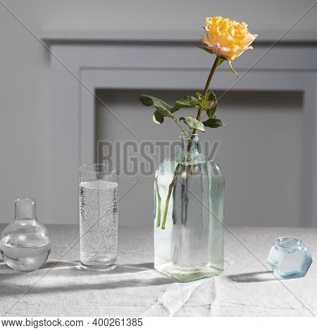 One Orange Rose Candlelight On Grey Tablecloth On The Table Next To White Wall. Square Frame. Copy S