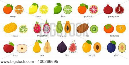 Large Collection Of Tropical, Exotic, Citrus Fruits With Names. Set Of Cutaway Fruits. Pairs Of Frui