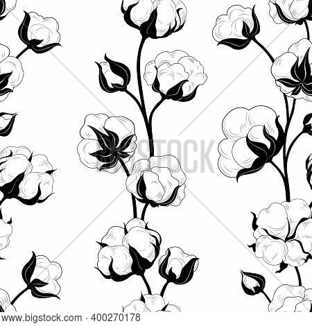 Seamless Pattern With Cotton Bolls And Branch. Cotton Flowers And Balls Floral Tile Backdrop