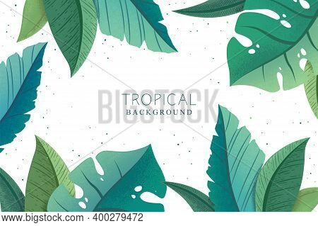 Vector Botanical Background With Green Trendy Exotic Palm And Monstera Leaves Isolated On White Back