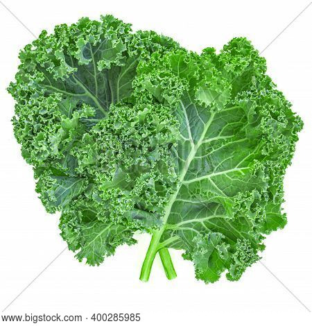 Kale Leaf Salad Vegetable Isolated On White Background. Kale Closeup. Flat Lay. Food  Vegan Concept.