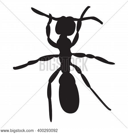 Ant Logo. Insect Icon Isolated. Black Silhouette Of Ant. Ant Icon In Flat Design