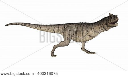 Carnotaurus Dinosaur Running And Roaring Isolated In White Background - 3d Render