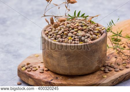 Uncooked Raw Green Lentil In Wooden Bowl On Stone Rustic Table, Heap Of Legume Lentil Background. Le