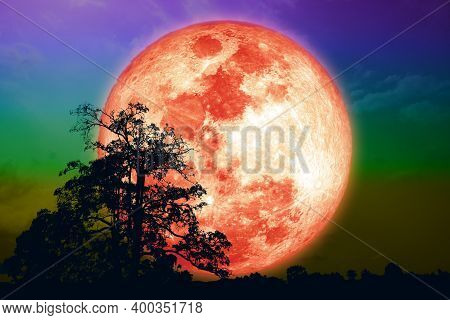 Super Grain Blood Moon And Silhouette Tree On Night Sky