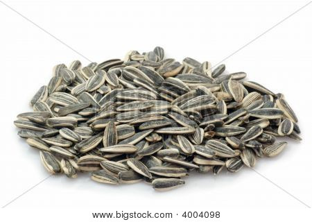 Sunflower seeds on a bright background. Studio shot poster