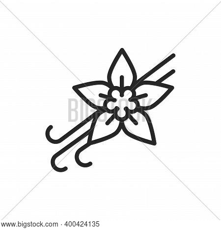Vanilla Pods And Flower With Caption Black Line Icon. Vector Illustration
