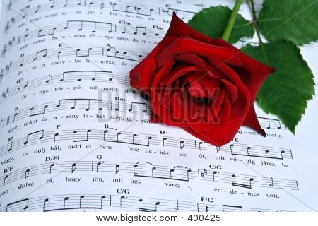 Song Of Rose