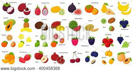 A Large Set Of Tropical, Exotic, Citrus Fruits With Names. Fruit And Berry Icons. Whole Fruit, Half