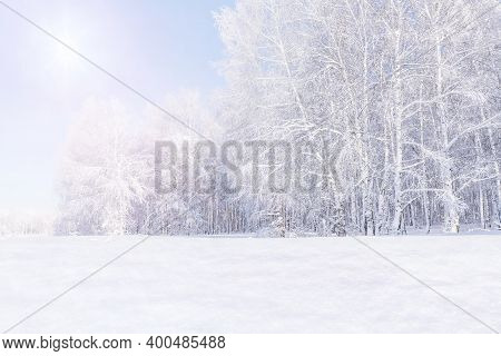 Morning Frosty Landscape Of A Birch Forest. Winter Trees Are Covered With Frost In The Bright Sun. S