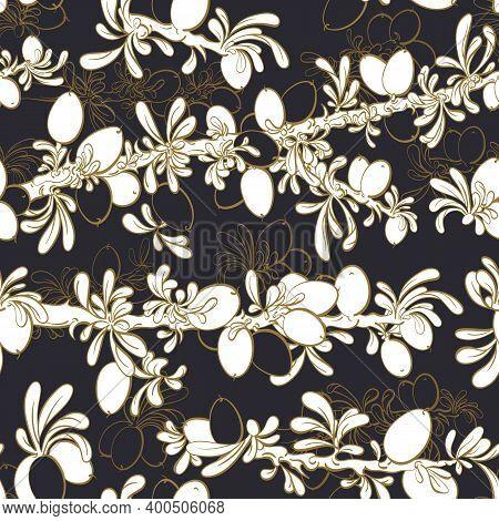 Argan Seamless Pattern. Vector Graphic Texture Garden On Black Background. Nature Art Line Tree, Sil