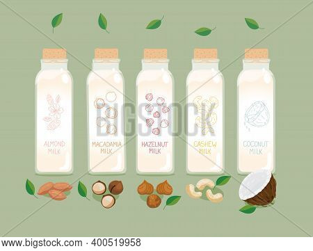 Nuts Milk. Bottles Of Plant Based Vegan Nuts Milk - Coconut, Almond, Cashew, Macadamia, Hazelnut. Ve