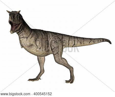 Carnotaurus Dinosaur Walking And Roaring Isolated In White Background - 3d Render