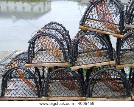 Lobster Net