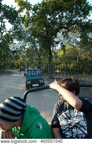 Bandhavgarh National Park, Madhya Pradesh, India-january 25, 2010: Rangers And Tourists Looking For