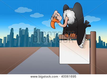 Vulture Sign Board