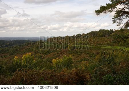 Woodland Countryside At The Devil's Punchbowl, Hindhead, Surrey, England