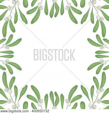 Vector Background With White Mistletoe; For Greeting Cards, Invitations, Posters, Banners.
