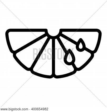 Clean Slice Bergamot Icon. Outline Clean Slice Bergamot Vector Icon For Web Design Isolated On White