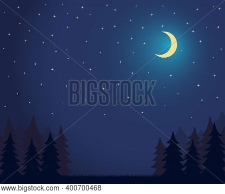 Forest Landscape Dark Night Sky With Lot Of Shiny Stars And Grass Ground Silhoutte Background