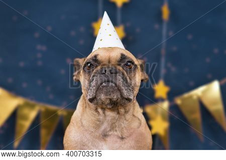 French Bulldog Dog Wearing New Year\'s Eve Party Celebration Hat In Front Of Blue Background With Go