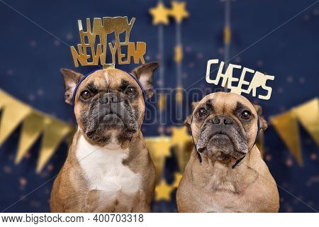 French Bulldog dogs wearing golden New Year\'s Eve party celebration headbands with words Happy new year and \\\\\\\'cheers\\\\\\\' in front of blue background with golden garlands