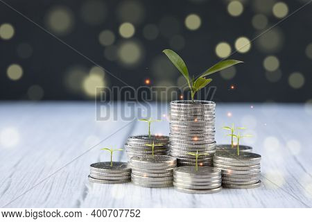 Coins Stack And Leaf With  Line Graph  Business Connect On Nature Background, Saving  Ideas And  Inv