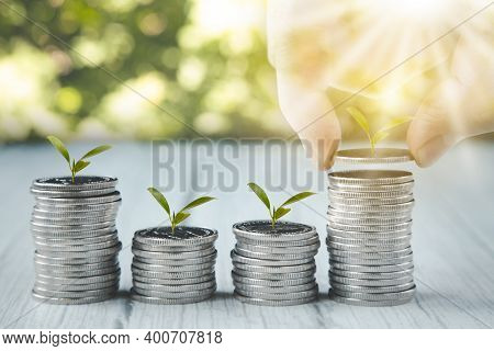 Close Up Of Male Hand Stacking Coins And Trees Growing On Coin In Dark Background ,business Finance
