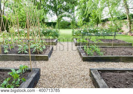 Gravel (shingle) Path Or Paths In A Vegetable Patch With Timber Raised Beds, In A Large Garden In En