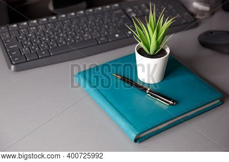 Desktop With Notebook, Keyboard, Computer Mouse, Indoor Plant And Pen. The Concept Of Remote Work, F