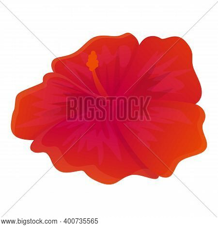 Red Hibiscus Flower Icon. Cartoon Of Red Hibiscus Flower Vector Icon For Web Design Isolated On Whit