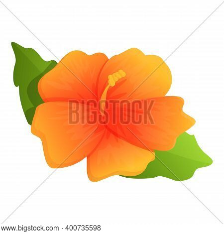 Plant Hibiscus Icon. Cartoon Of Plant Hibiscus Vector Icon For Web Design Isolated On White Backgrou