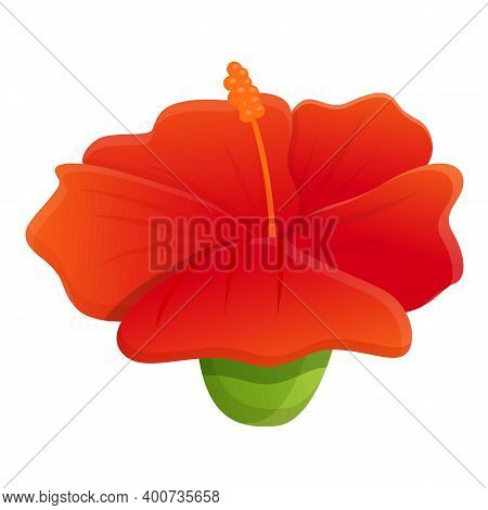 Exotic Hibiscus Icon. Cartoon Of Exotic Hibiscus Vector Icon For Web Design Isolated On White Backgr