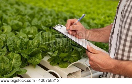 Unrecognizable Man In Checkered Shirt Writing On Clipboard While Standing Near Hydroponic Trays With
