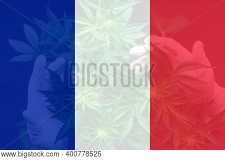 Cannabis Legalization In The France. Medical Cannabis In The France. Weed Decriminalization In Franc