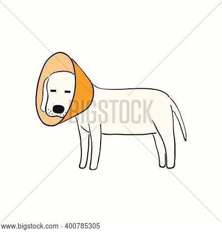Cute Funny Dog, Puppy, Wearing A Cone. Hand Drawn Color Vector Illustration, Isolated On White. Line