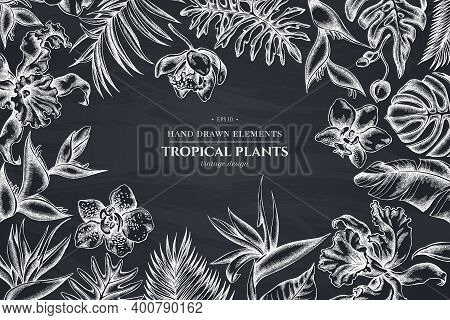 Floral Design With Chalk Monstera, Banana Palm Leaves, Strelitzia, Heliconia, Tropical Palm Leaves,