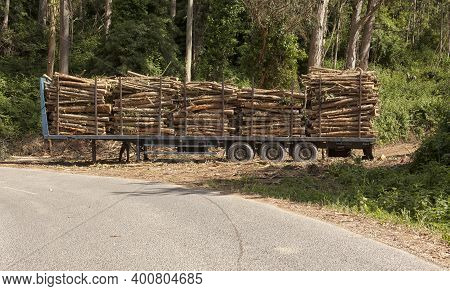 Industrial Truck For Transporting Timber. Timber Export And Shipping Concept.
