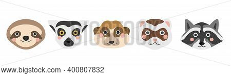 A Set Of Cute Animal Faces. Sloth, Lemur, Meerkat, Ferret And Raccoon. Vector Flat Image On A White