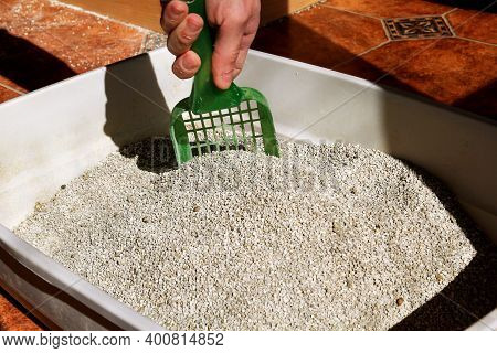 Cleaning Cat Litter Box. Hand Is Cleaning Of Cat Litter Box With Green Spatula. Toilet Cat Cleaning