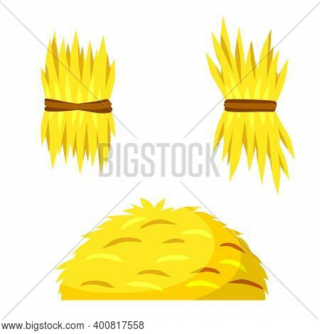 Sheaf Of Hay. Village Harvest. Yellow Dried Plants. Production Of Natural Food On Farm. Set Of Stack
