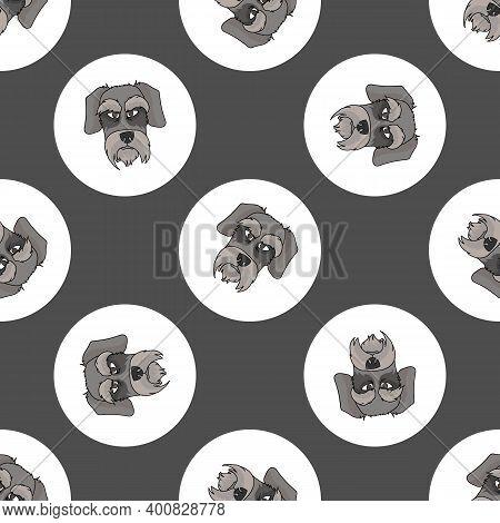Hand Drawn Cute Schnauzer Dog Face Breed In Polka Dot Seamless Vector Pattern. Purebread Pedigree Pu